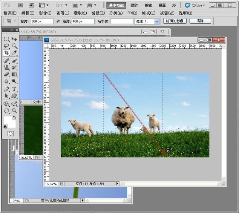 Photoshop 影像設計  - PHOTOSHOP 入門教學 - 圖片固定裁切與白邊 - SNAG0009