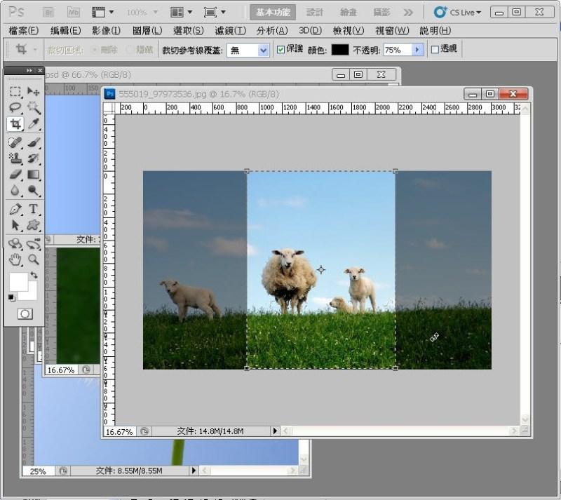 Photoshop 影像設計  - PHOTOSHOP 入門教學 - 圖片固定裁切與白邊 - SNAG0010