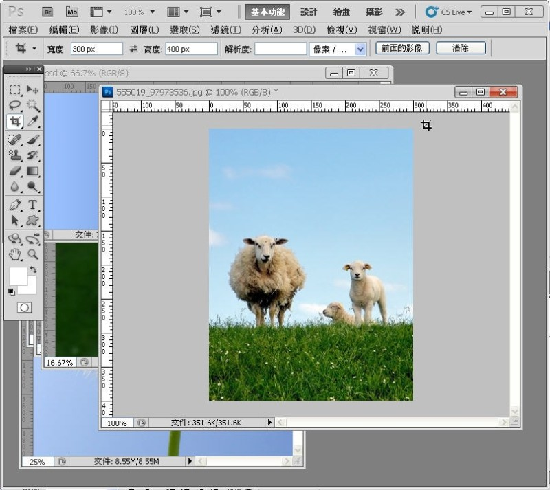 Photoshop 影像設計  - PHOTOSHOP 入門教學 - 圖片固定裁切與白邊 - SNAG0011