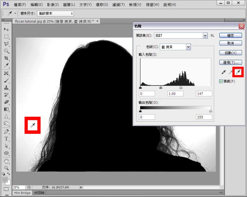 Photoshop 影像設計  - Photoshop 教學 - 色版去背 - 頭髮去背 - 標準教學 - fly-07-1