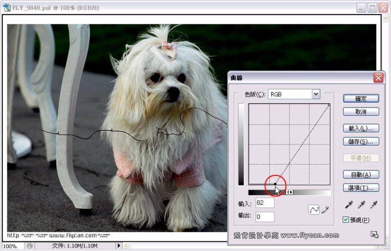 Photoshop 影像設計 Photoshop 後製修圖  - Photoshop 教學 - 曲線 - 亮度調整 - 入門篇【一】 - curve_05_537