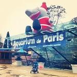 Noël à l'Aquarium de Paris