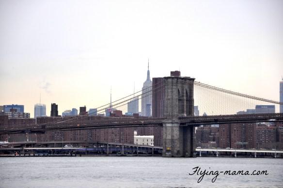 48H New York 6
