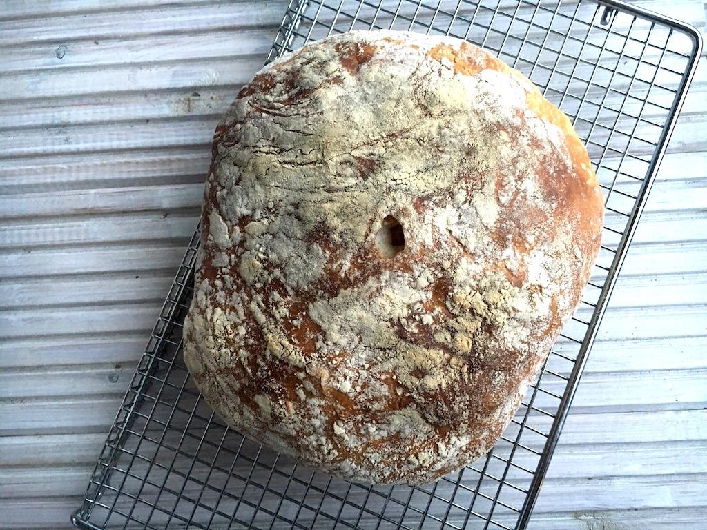 Brood trend 2016