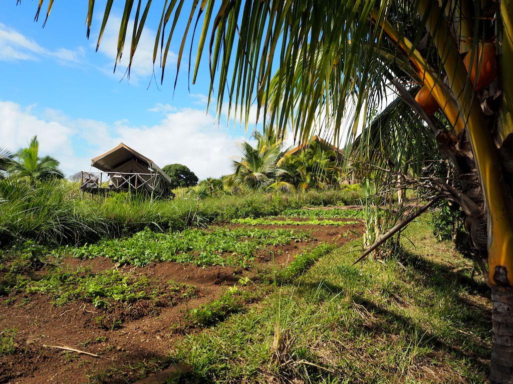 Otentic eco kamperen Mauritius