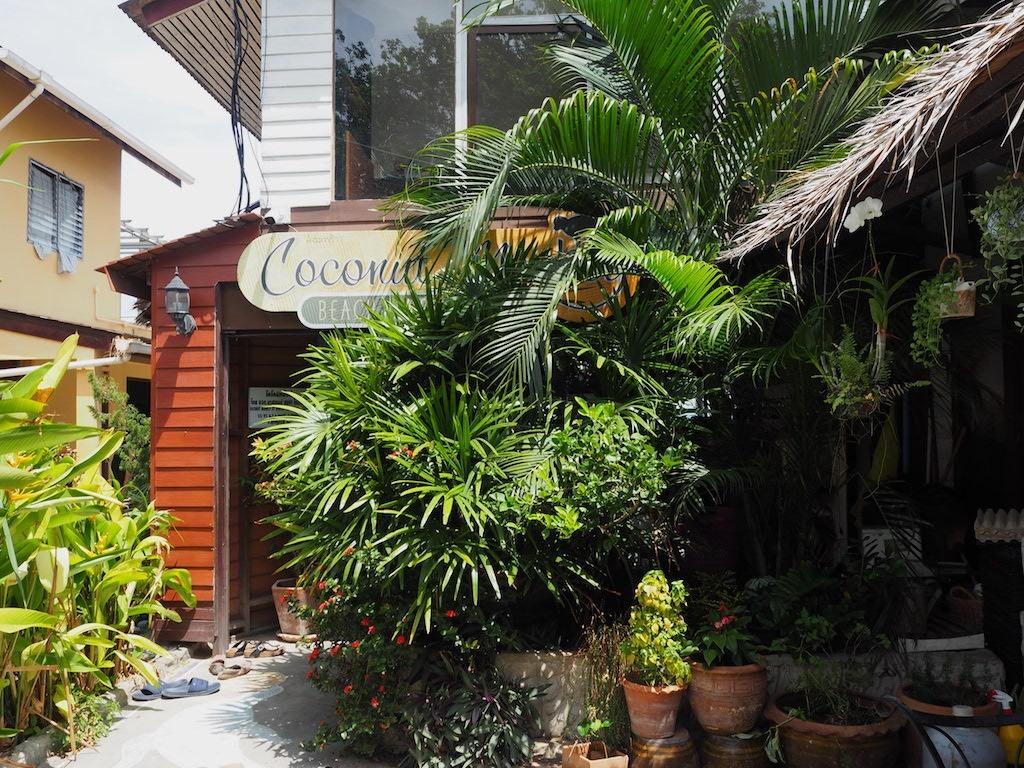 Coconut Monkey hotspot Ko Tao