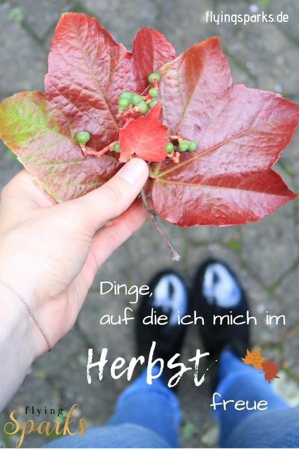 Herbst, Blätter, Autumn, fall, Jahreszeit, cozy, things to do, happy, glücklich, kuschelig, Tee, Lesen, Bücher, books