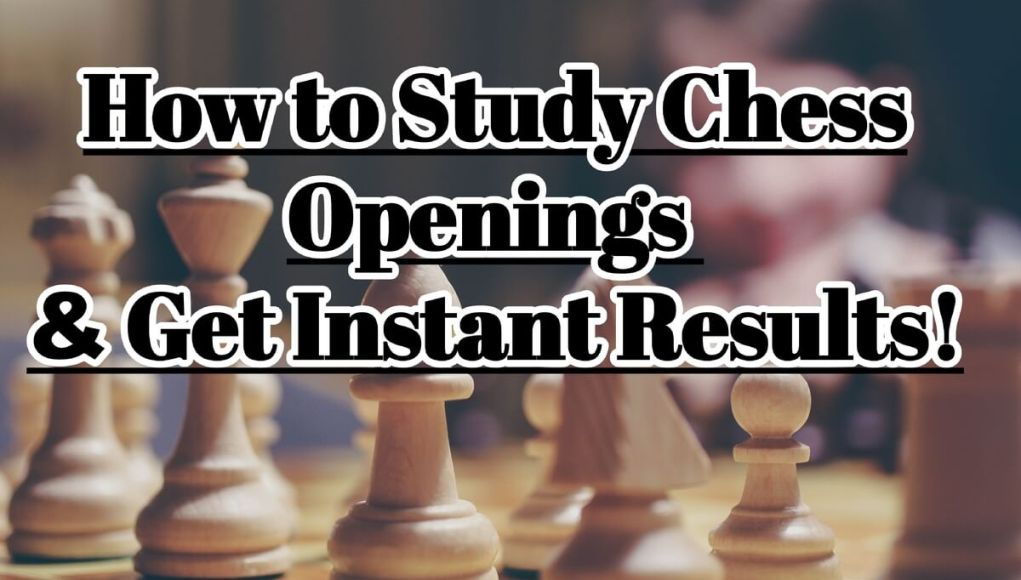 How You Can Study Chess Openings and Get Instant Results (FlyIntoBooks.com)