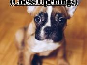 How to Play the French Defense - Chess Openings (FlyIntoBooks.com)