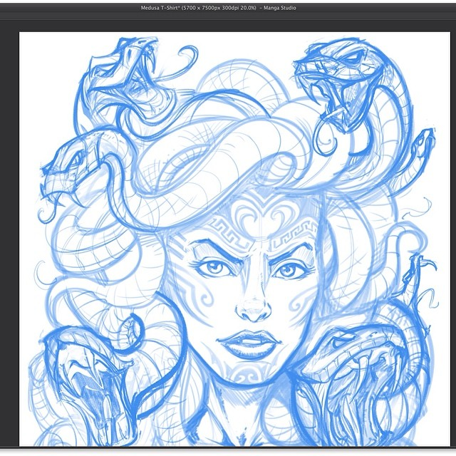 A sketch of medusa for a t-shirt I am doing for Fit-Out Apparel.