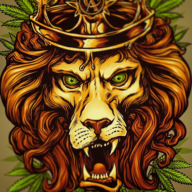 Rasta lion illustration I created for #concentratedapparel. Had a lot of fun working on this. Silk screen T-shirts available from Concentrated apparel.  Www.flylanddesigns.com