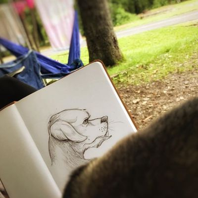 Drawing our puppy Sansa in a camping trip last weekend. Really enjoying this pop up camper New Artwork From Instagram