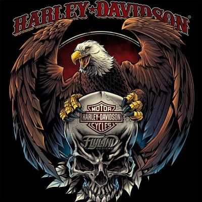 One of the coolest opportunities I had last year was to work with Harley Davidson on some apparel artwork - this eagle and skull was my favorite design - has anyone seen this out in the wild in any of their shops?#art #originalartwork #mangastudio #clipstudiopaint #illustration #hireanillustrator #freelanceartist #wacomcintiq#skullart #skulls #skulldesign #darkartist #darkart #skullartwork#americaneagle #harleydavidsonart #harleydavidsonmotorcycles #harleydavidson