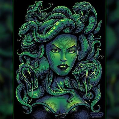 One of my favorite illustrations from years ago - my portrait of Medusa for Fit Out Apparel.I'd love to design something like this for you - feel free to reach out!•••#art #medusa #medusaart #mythart #mangastudio #clipstudiopaint #illustration #tshirtart #tshirtillustration #freelanceartist #wacomcintiq