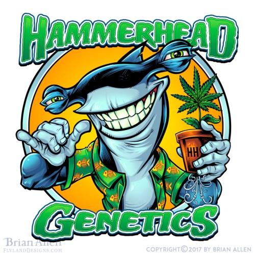 hammerhead shark holding a marij