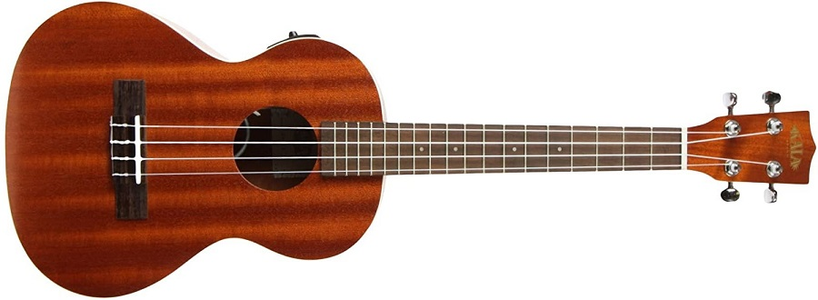 Best ukulele for starter