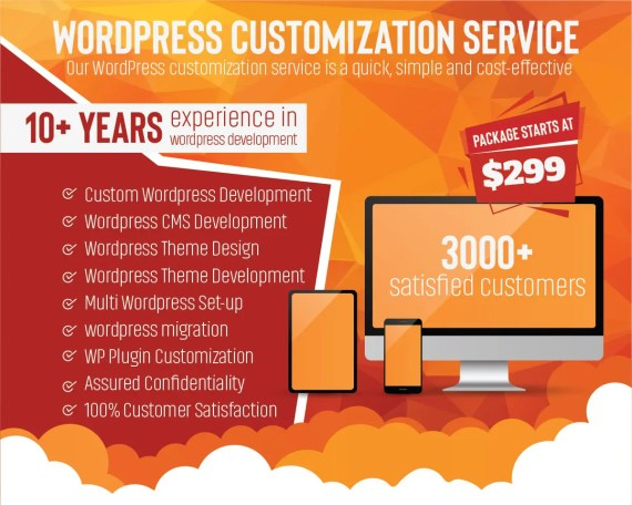 wordpress customization service