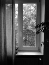 Fünf Fenster - No. 4 || Foto: Ulf Cronenberg, Würzburg