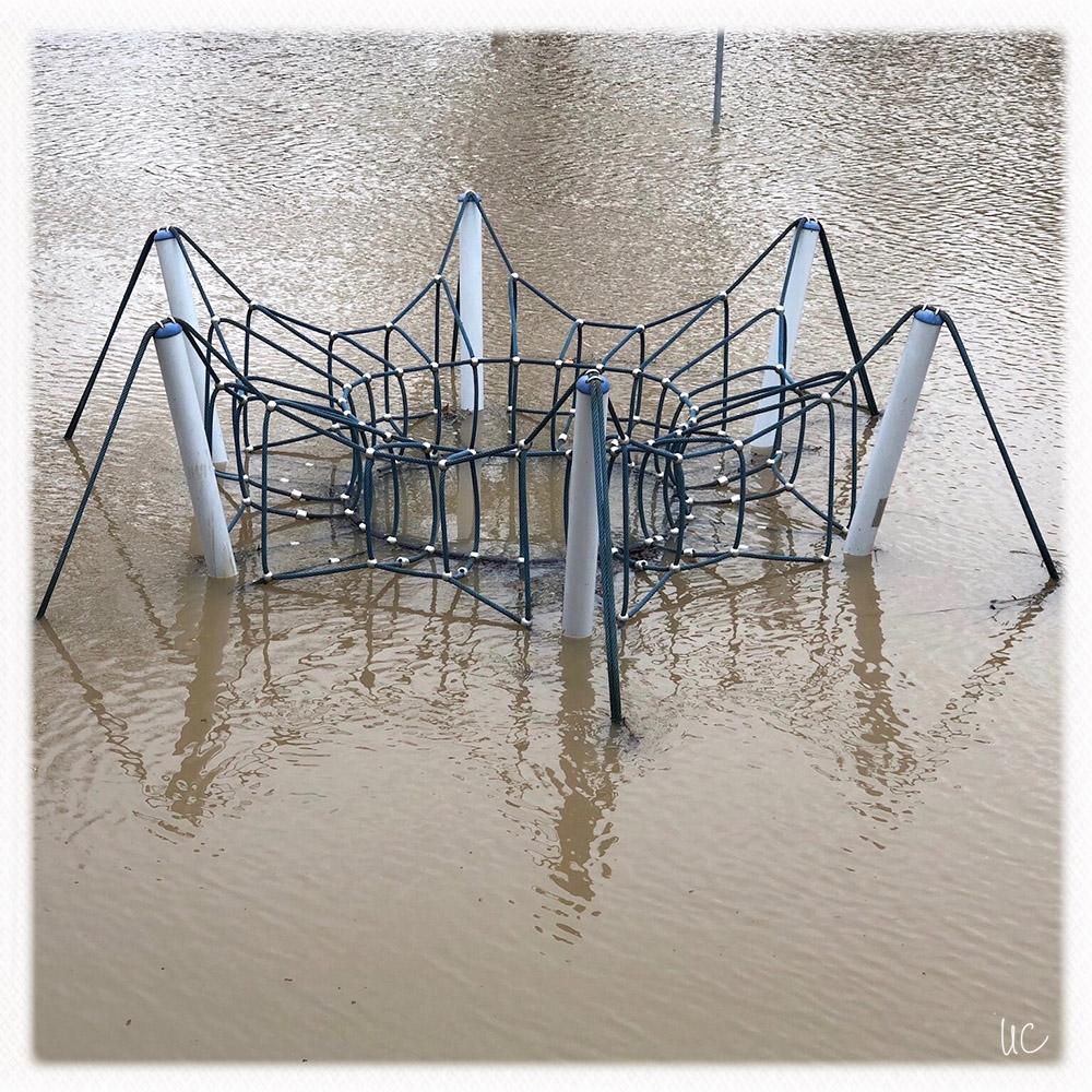 Hochwasser am Main– No. 3
