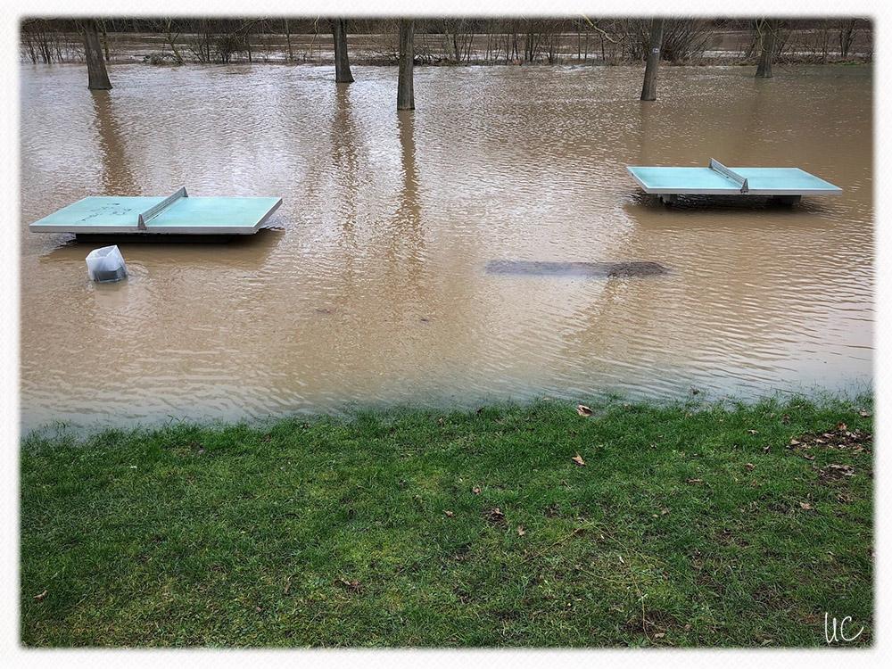 Hochwasser am Main– No. 4