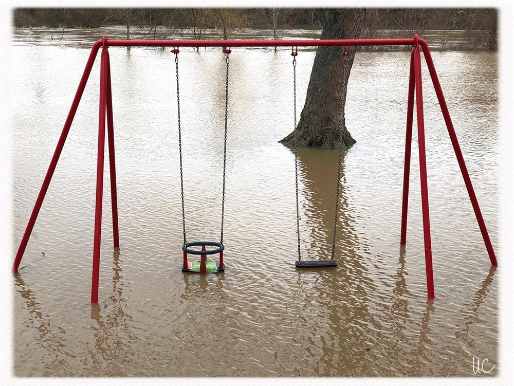 Hochwasser am Main– No. 12