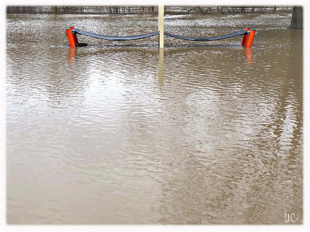 Hochwasser am Main– No. 06