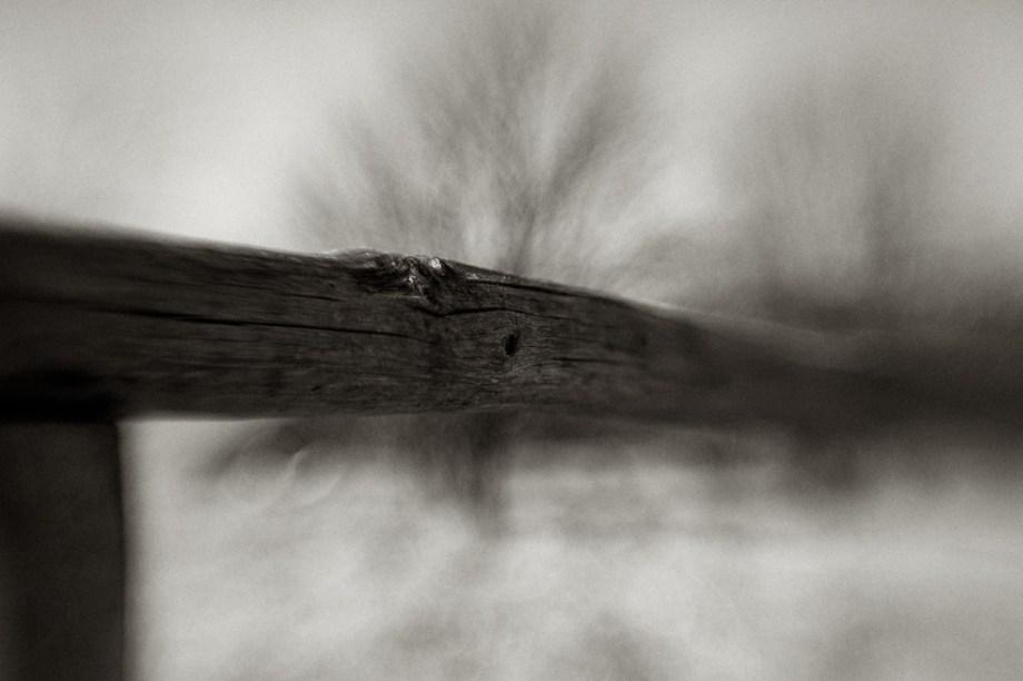 Fototechnik: Bilder mit Lensbaby-Objektiven