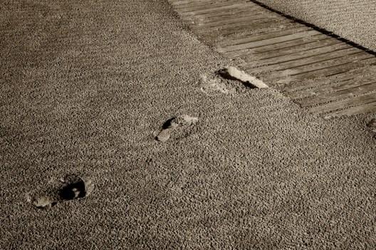 Holzstege am Strand, Bergen aan Zee– No. 4 // Foto: © Ulf Cronenberg, Würzburg