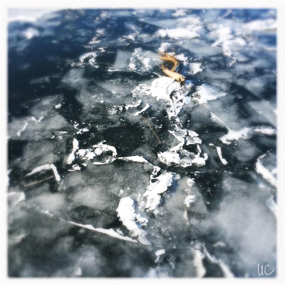 Würzburg– Eis auf dem Main