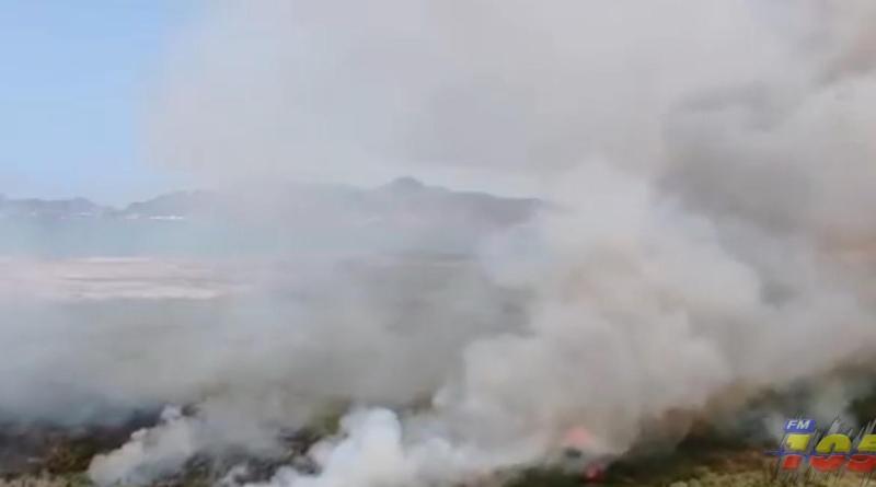 Gran incendio de maleza moviliza cuerpos de seguridad