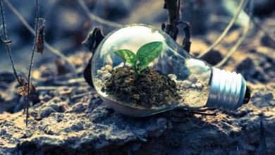 green energy, green economy