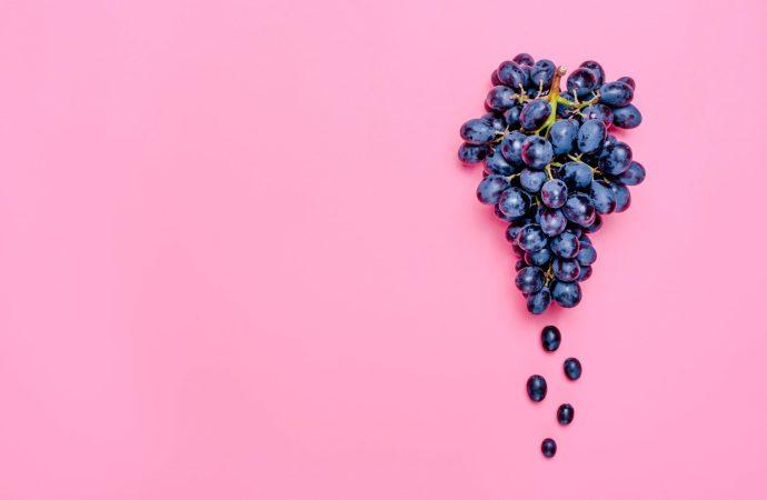 The rise of Vegan wine