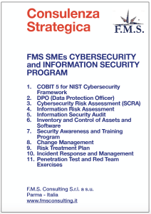 F.M.S. SMEs Cybersecurity adn Information security Program