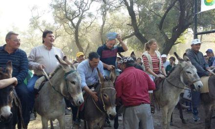Maratón de burros en General Deheza