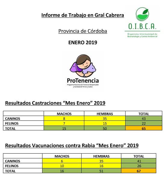 OIBCA- RESULTADO CASTRACIONES Y VACUNACION MES DE ENERO