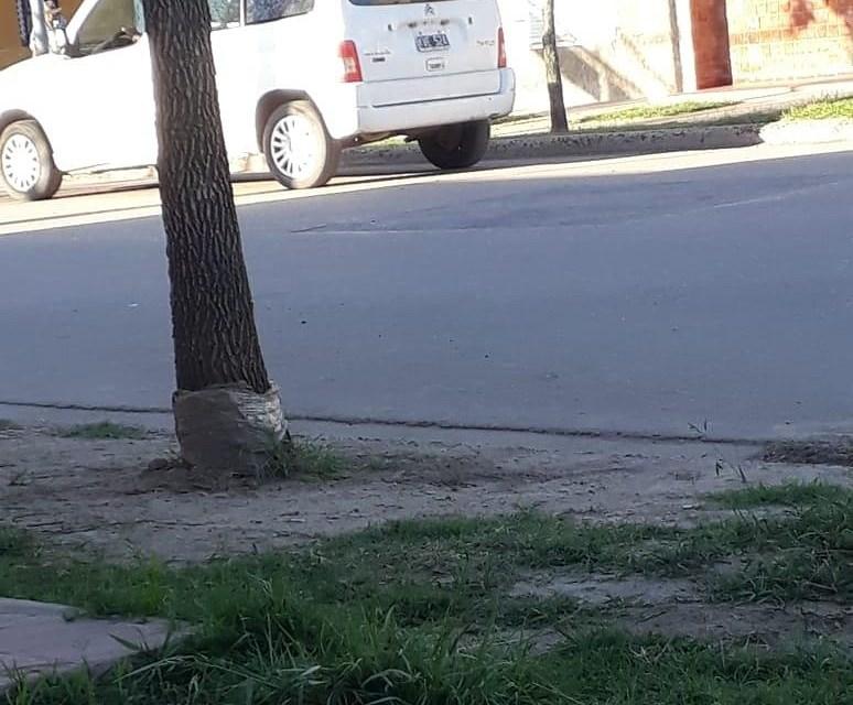 Extraña situación frente a un domicilio de un vecino de la ciudad