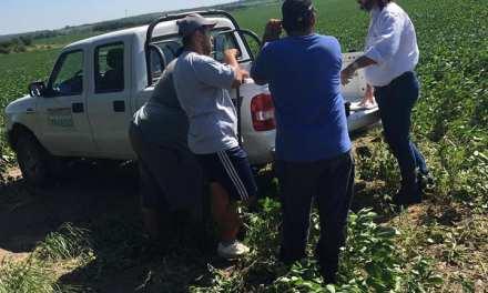 UATRE: Irregularidades con empleados en un campo de Alcira Gigena