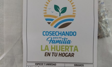 Quedan disponibles semillas del programa «La huerta en tu hogar»
