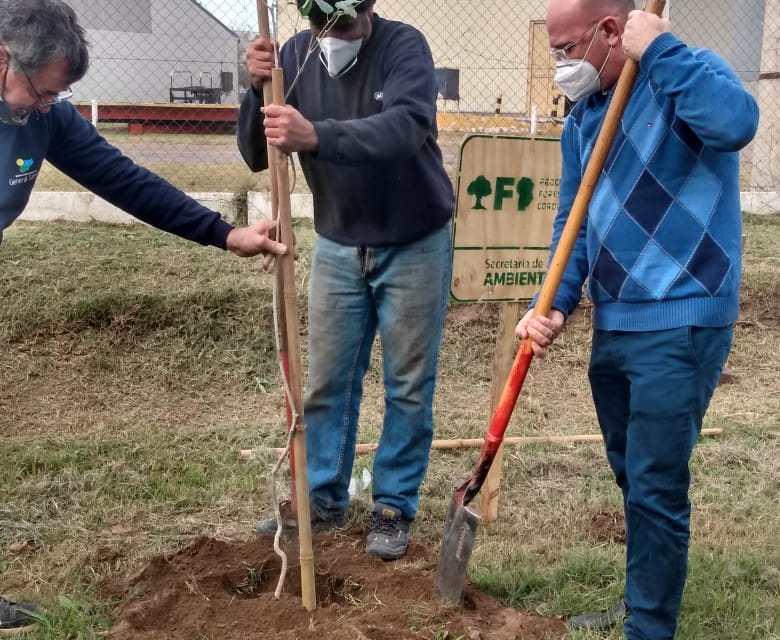 Plantarán 500 árboles en el predio del Parque Industrial