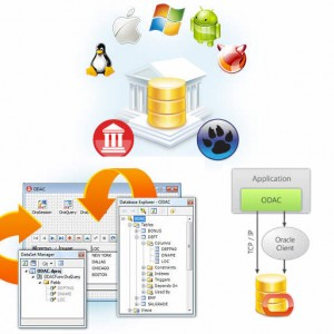 Delphi XE5 Firemonkey Oracle Data Access Components