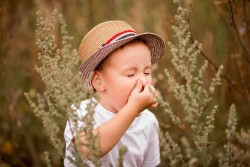Boy sneezing because of seasonal allergy while sitting in a grass