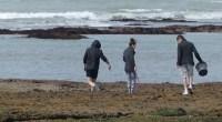 Avant de programmer une sortie de pêche à pied sur le littoral, je vérifie à quelle période et à quels endroits j'ai le droit de pêcher et je bien entendu […]