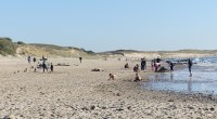 Il existe de nombreux endroits dans notre région pour pouvoir se baigner (plages de l'océan Atlantique, rivières, plans d'eau). Cependant, l'intégrité de nos eaux de baignades n'y est pas forcément […]
