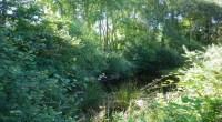Les associations de protection de la nature et de l'environnement* contestent devant la justice les autorisations que le préfet de Loire-Atlantique a accordé le 20 décembre 2013 aux porteurs de […]