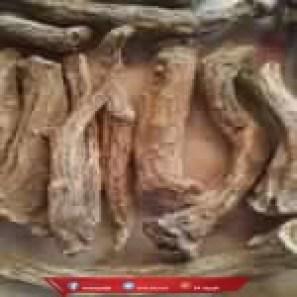 اضرار القسط الهندي جابر القحطاني