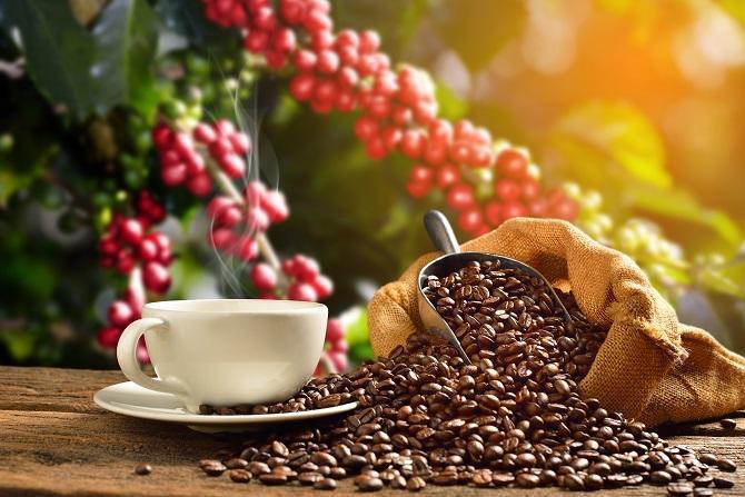 اضرار القهوة على جسم الانسان بالتفصيل وفقا للدراسات