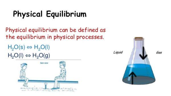 شرح التوازن الفيزيائي وانواعه