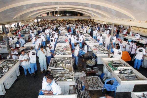 """سوق السمك في دبي """" الجديد """" بالصور"""