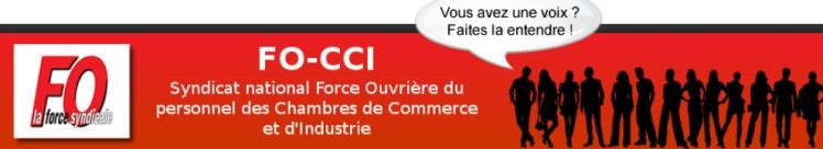 Syndicat national Force Ouvrière du personnel des Chambres de Commerce et d'Industrie