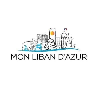 Collecte de médicaments de «Mon Liban d'Azur» à Nice